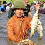 Nằm mơ thấy bắt cá là điềm báo gì?