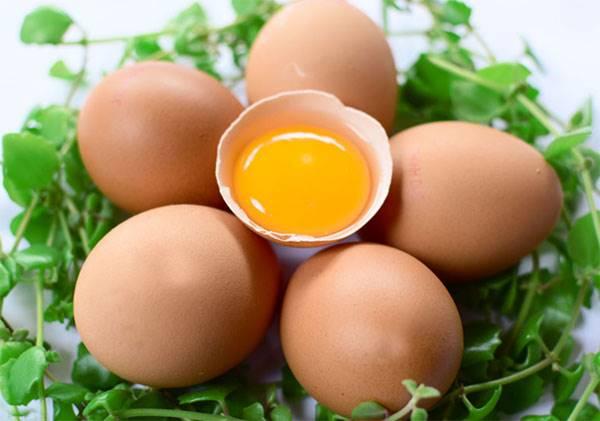 Giải mã giấc mơ thấy trứng là điềm báo trước gì? đánh số mấy